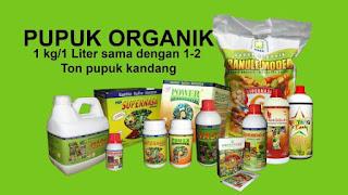 http://www.distributorpupuknasa.com/2017/11/distributor-pupuk-nasa-di-indragiri-hulu-riau.html