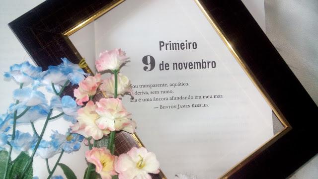 Novembro 9