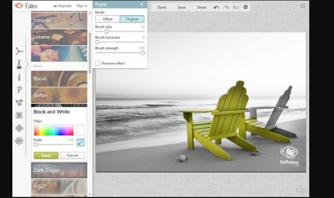 Alternatif Adobe Photoshop Online - PicMonkey