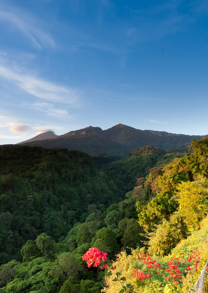 View End activity hiking mount Rinjani at Senaru village - Mount Rinjani