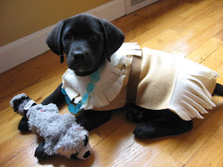 19) Pocahontas More like Pupahontas! Your pet will be feeling like all the colors of the wind in this Disney Princess-inspired costume. & 31 DIY Halloween Pet Costumes |