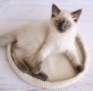 http://translate.googleusercontent.com/translate_c?depth=1&hl=es&rurl=translate.google.es&sl=en&tl=es&u=http://dabblesandbabbles.com/crocheted-cat-bed/&usg=ALkJrhj4GI2ebqKJd69RgTkWM5V4c77WlA