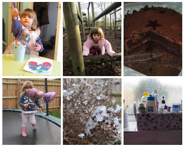 Week 4 of #Project365 - A photo every day for a year!