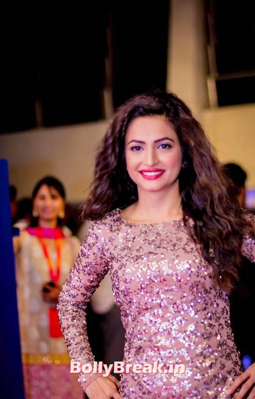 , Kriti Kharbanda in shimmer Gown at SIIMA Awards 2014
