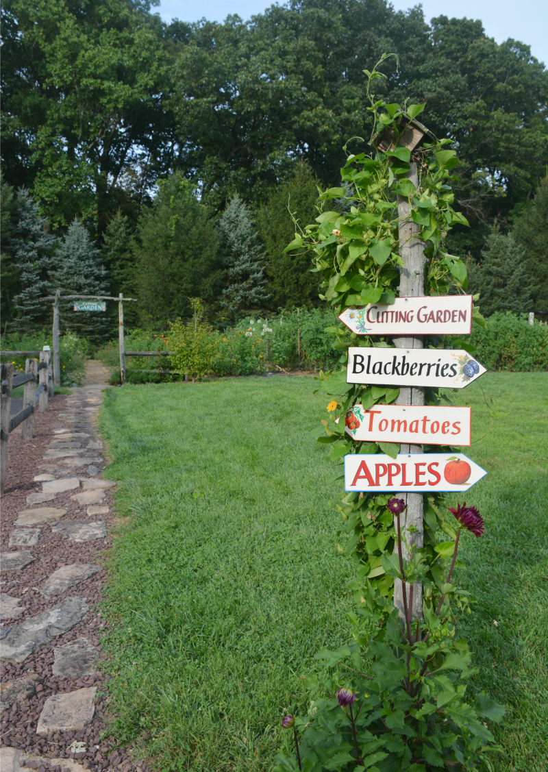 Picking Flowers at Solebury Orchards | Organized Mess