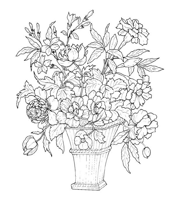 Schede ed attivit didattiche del maestro fabio per la for Disegni da stampare e colorare fiori