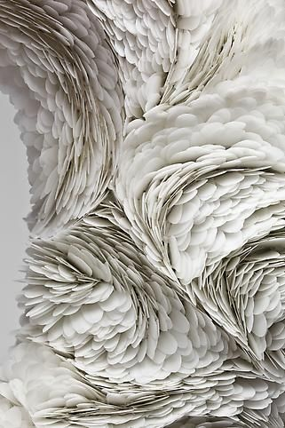 Magnificent closeup detail of white feathers that appear as art