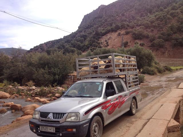 Marrocos 2014 - O regresso  - Página 2 2014-10-13%2B11.51.47