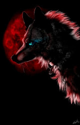 Moon Red Wolf Wallpaper 2