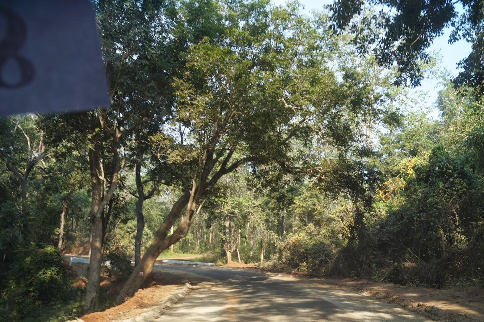 Rajahmundry a Photo Feature
