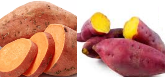 Sweet Potato/Shakarkandi meaning in hindi, Spanish, tamil, telugu, malayalam, urdu, kannada name, gujarati, in marathi, indian name, marathi, tamil, english, other names called as, translation
