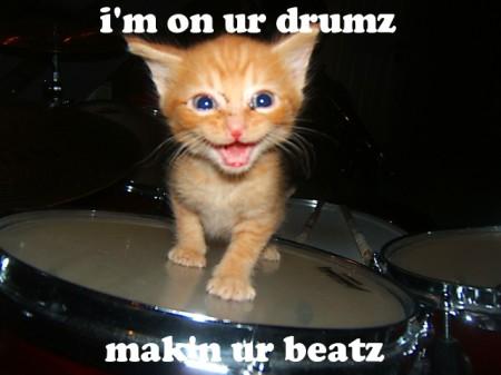 I am On Your Drumz, Making Your Beatz, funny cat meme