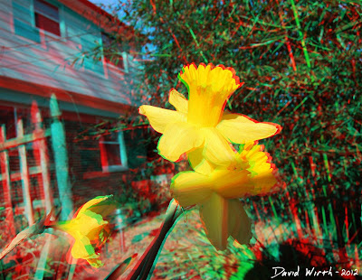3D Flower out of Screen