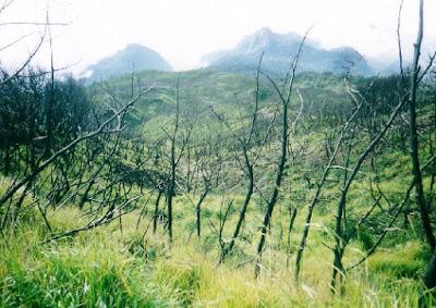 Pendakian Gunung Ciremai