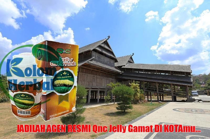 Agen Qnc Jelly Gamat Di Sumbawa