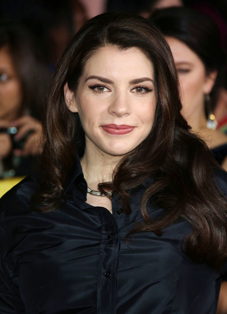 is stephenie meyer writing a new book after breaking dawn