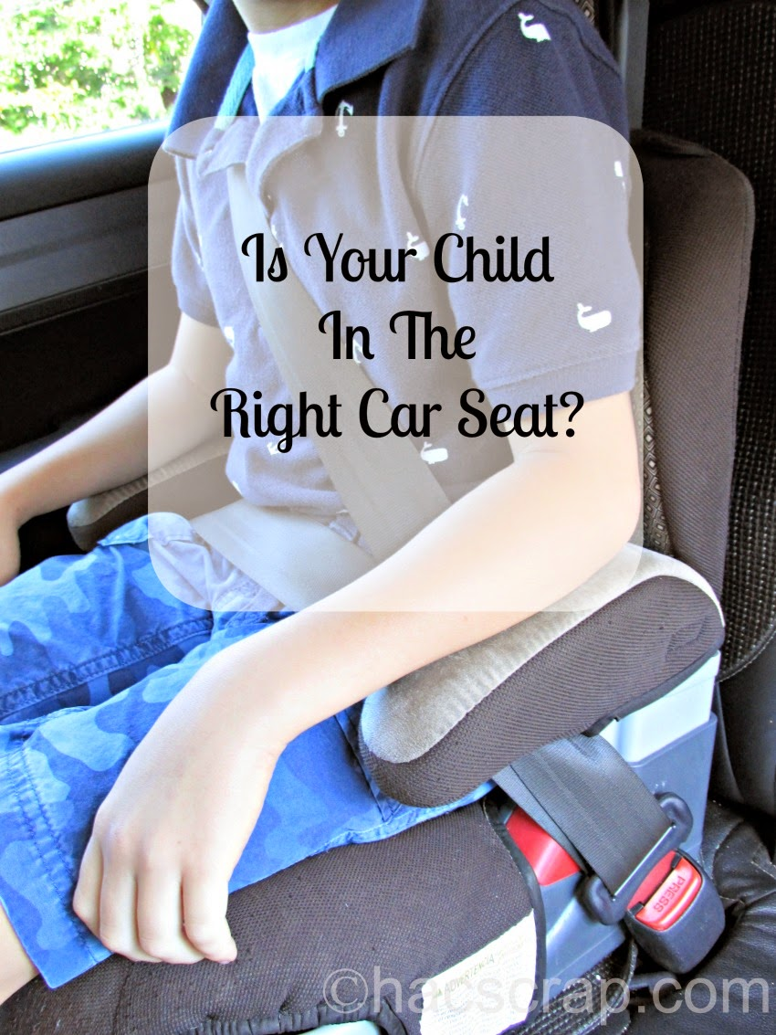 Child Passenger Safety Week - Is Your Child in the Right Seat?