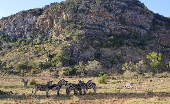 Xvlor.com Limpopo National Park in Gaza, Mozambique