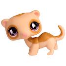 Littlest Pet Shop Pet Pairs Ferret (#652) Pet