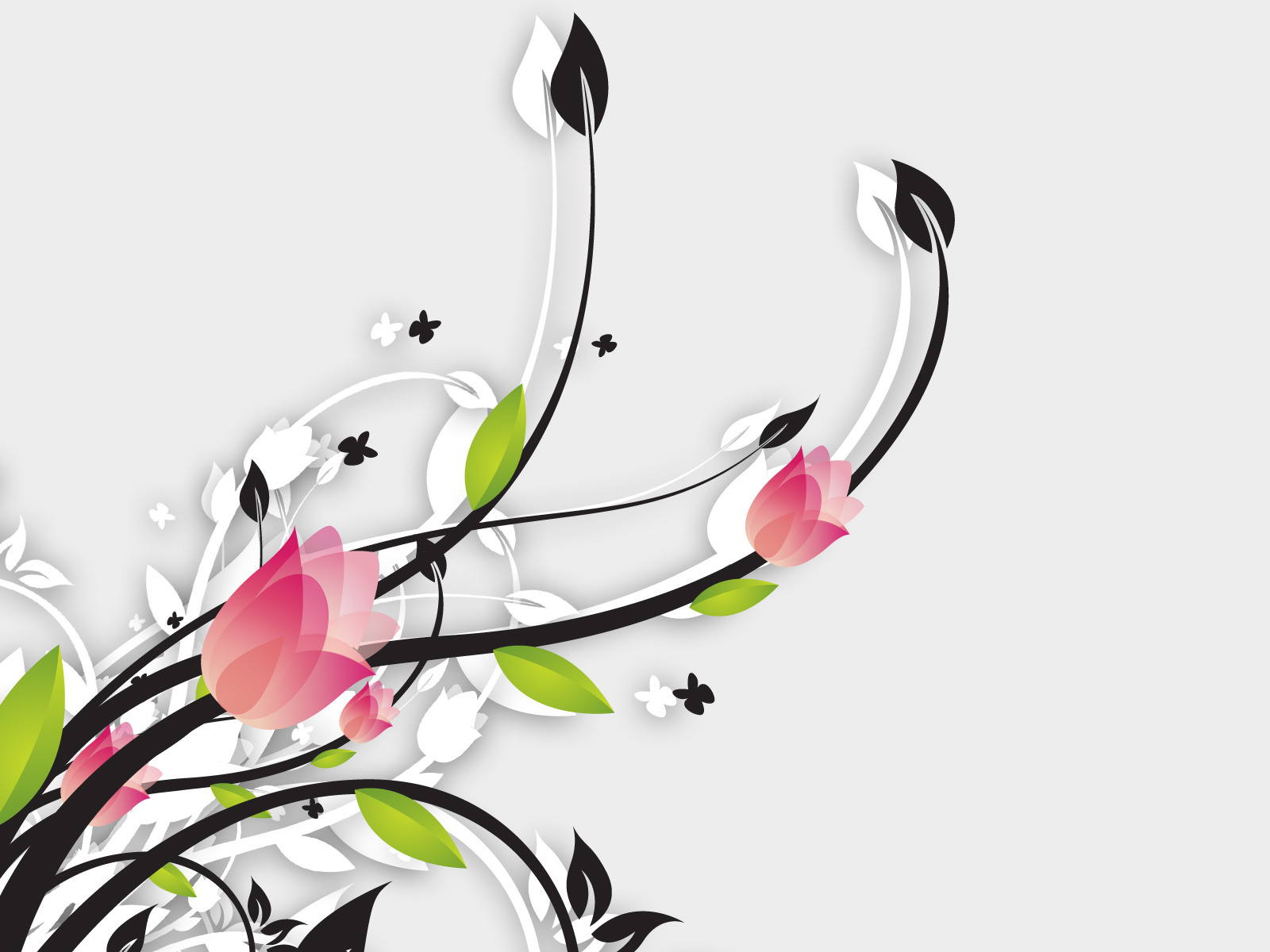 flowers  vector  beautiful background