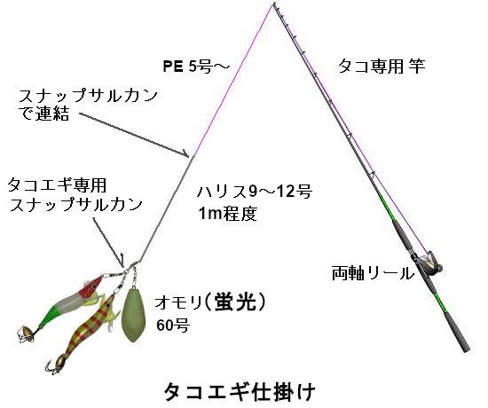 関西の船釣りで釣れる 竿とリール タコエギ 仕掛け