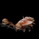 Guía de criaturas de la Galaxia Sporeana ~ Parte 1 ~ (Spore Galaxies: The Fallen) Cangrejo%2BEspinoso