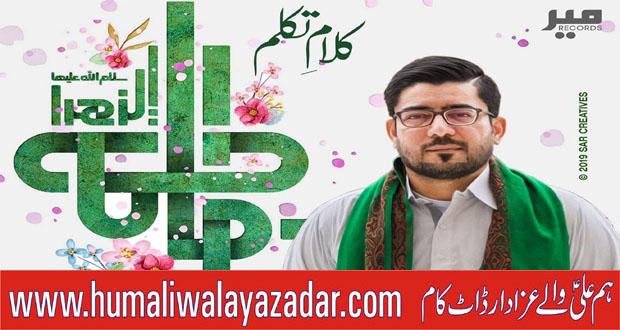 Mir Hasan Mir Manqabat 2019 ~ Manqabat Hum Ali Walay Azadar