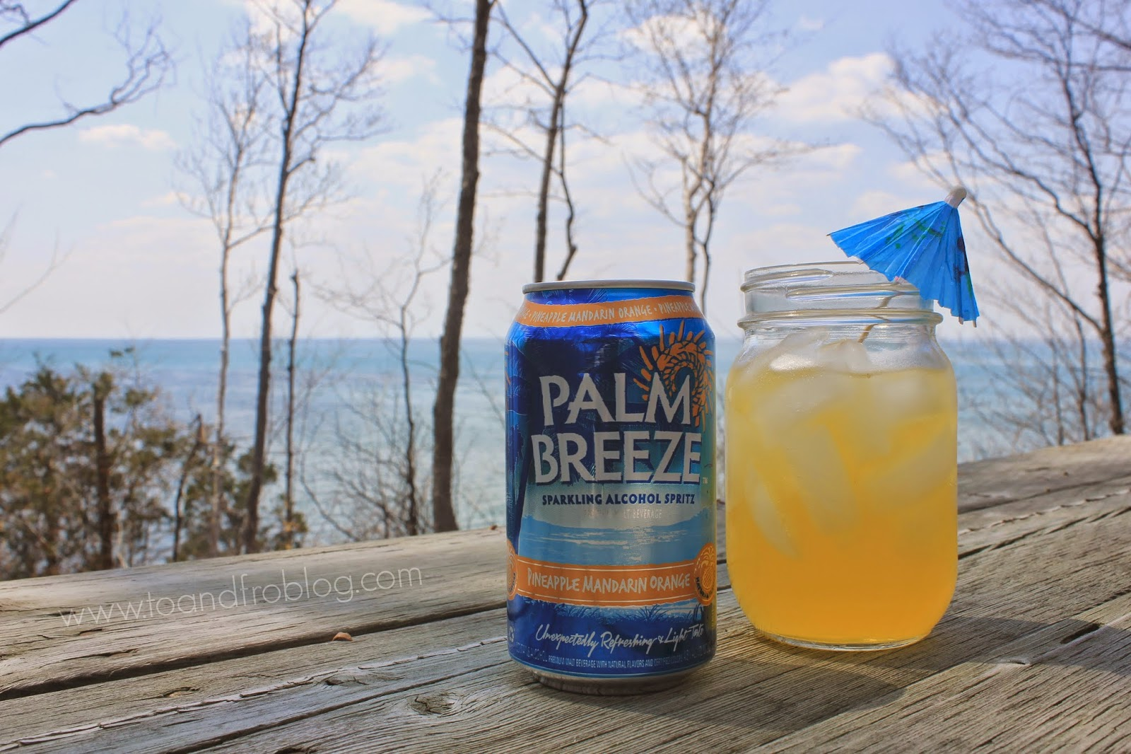 vacay every day palm breeze