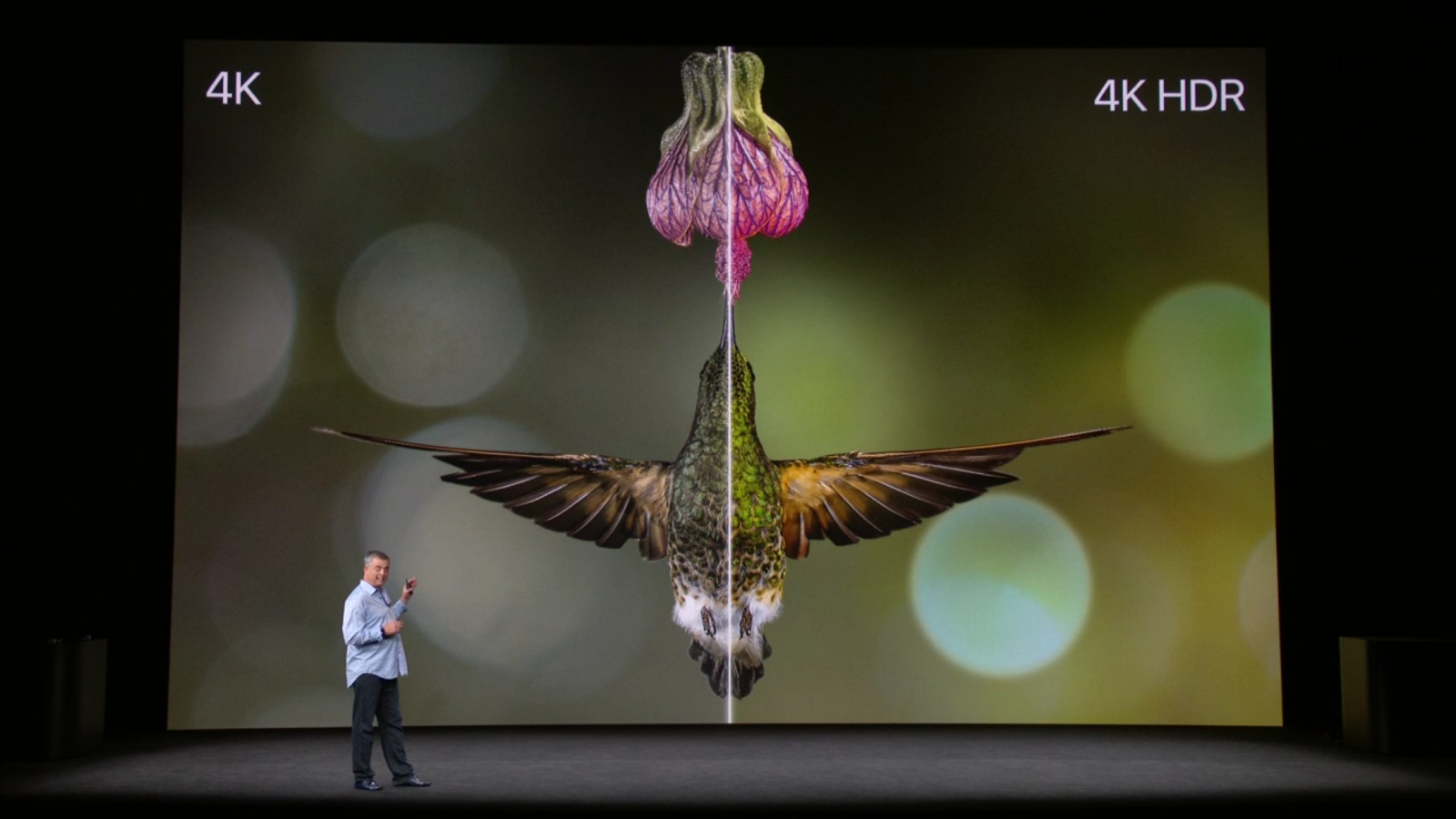 Apple has just launched Apple TV with new 4K video quality support which offers a better and sharper quality content. Apple TV is integrated A10X chip