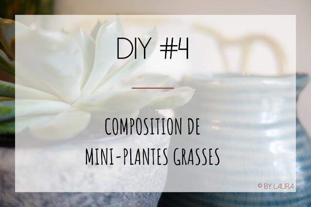 epingle pinterest pour article sur la composition de plantes grasses