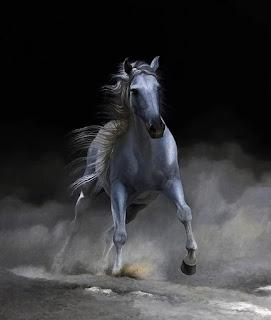 brillante-hiperrealismo-caballos-corriendo