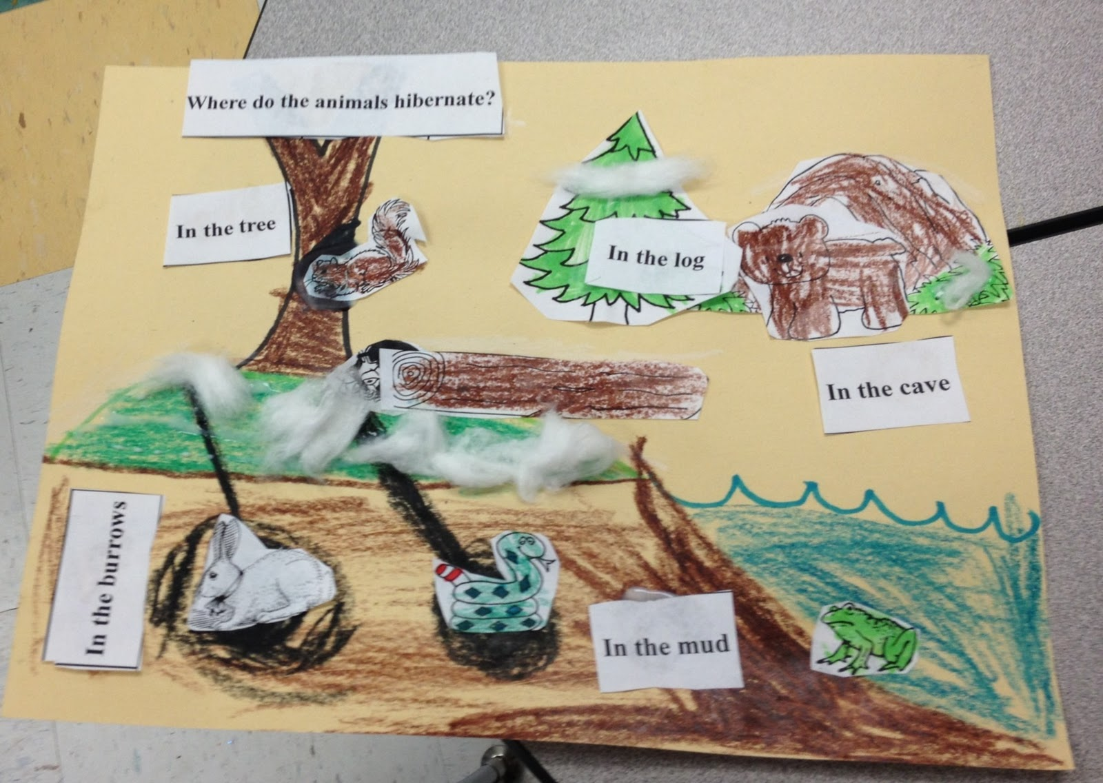Ms Crowley S Class What Do Animals Do In Winter