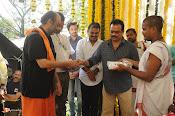Mahesh Babu New Movie Opening-thumbnail-12