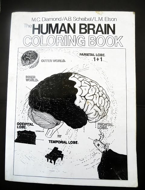The Human Brain Coloring Book Diamond Scheibel Elson 1985 | Coloring ...