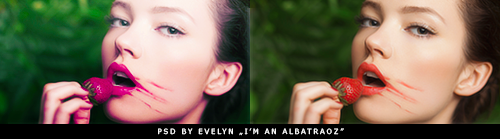 http://youwakeup.deviantart.com/art/Psd-by-Evelyn-I-m-an-albatraoz-502604831?ga_submit_new=10%253A1419554419