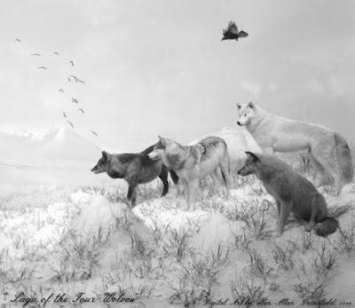 IVJ Dronsfield Wolves Feb 2016