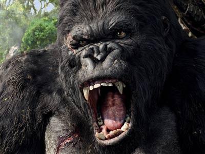 Resultado de imagem para gorila