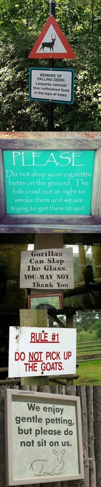 gap ba gap 10 funniest animal zoo signs