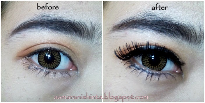 d13c2dba9d4 Every post has its own story: [REVIEW] 107 Black Ardell Fashion Lashes