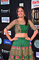 Nandita Swetha in a tight Green Choli Ghagra at IIFA Utsavam Awards March 2017 ~ 036.JPG