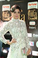 Poonam Kaur in Beautiful Floor Length Gown at IIFA Utsavam Awards 2017  Day 2  Exclusive 32.JPG