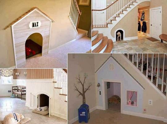 casa-animais-aproveitamento-escaca