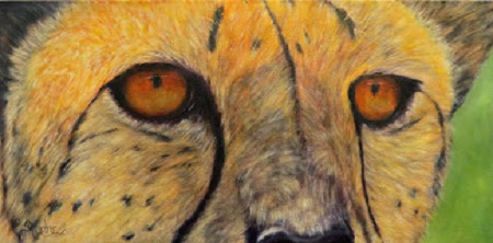 """Kito"", a cheetah portrait, close-up"