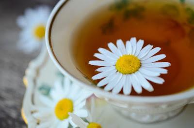 manfaat chamomile, teh chamomile beli dimana, manfaat bunga chamomile untuk kecantikan, teh chamomile di indomaret, bunga chamomile di indonesia, merk teh chamomile, manfaat chamomile untuk wajah, teh chamomile di indonesia, teh chamomile lipton,