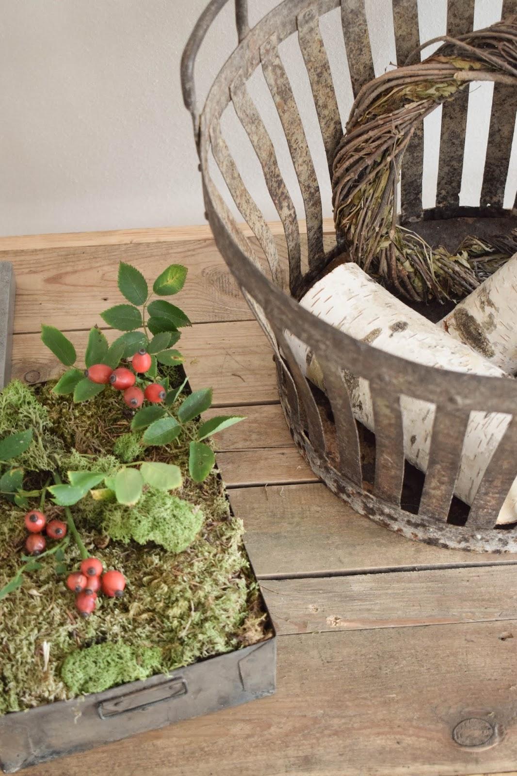 Herbstliche Deko für den Tisch, Sideboard und Konsole. Dekoidee mit Moos, Hagebutte dekorationen