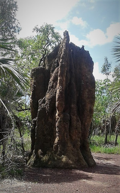 Magnetic termite mound. Termitero gigante 4m