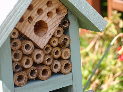 Bug Hotel with Mason bee