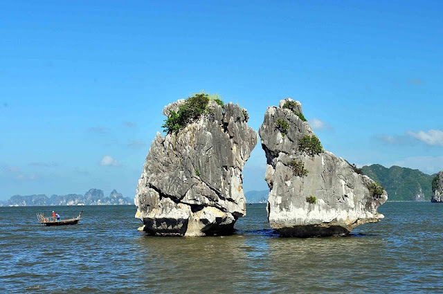 Why the Trong Mai island is the symbol of Ha Long bay?