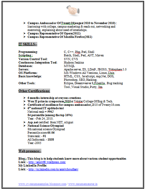 Free Pdf Resume Format Download