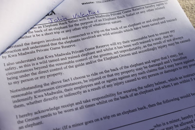 The contract where we sign away our lives... elephant ride, kruger park